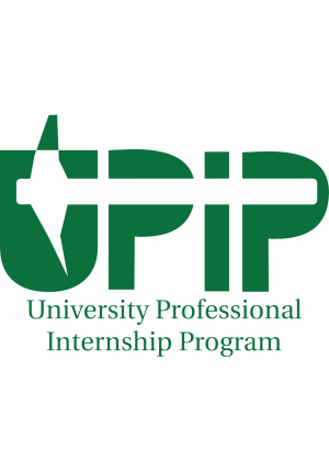 university professional internship program image